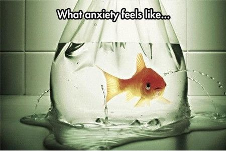 Image result for funny image about anxiety