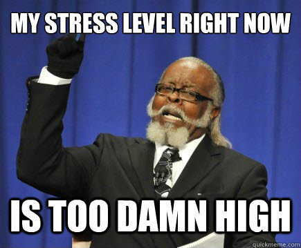 My Stress Level Is Too Damn High stress, motivation and time management wellness in college