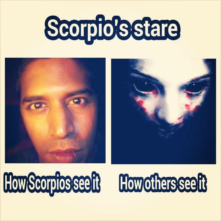 16 Scorpio Season Meme | Scorpio Quotes