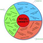 Social Anxiety Wheel