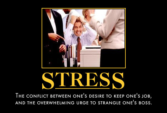 Funny Work Stress Meme : Work stress