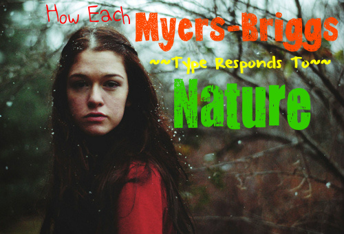 How Each Myers-Briggs Type Responds To Nature