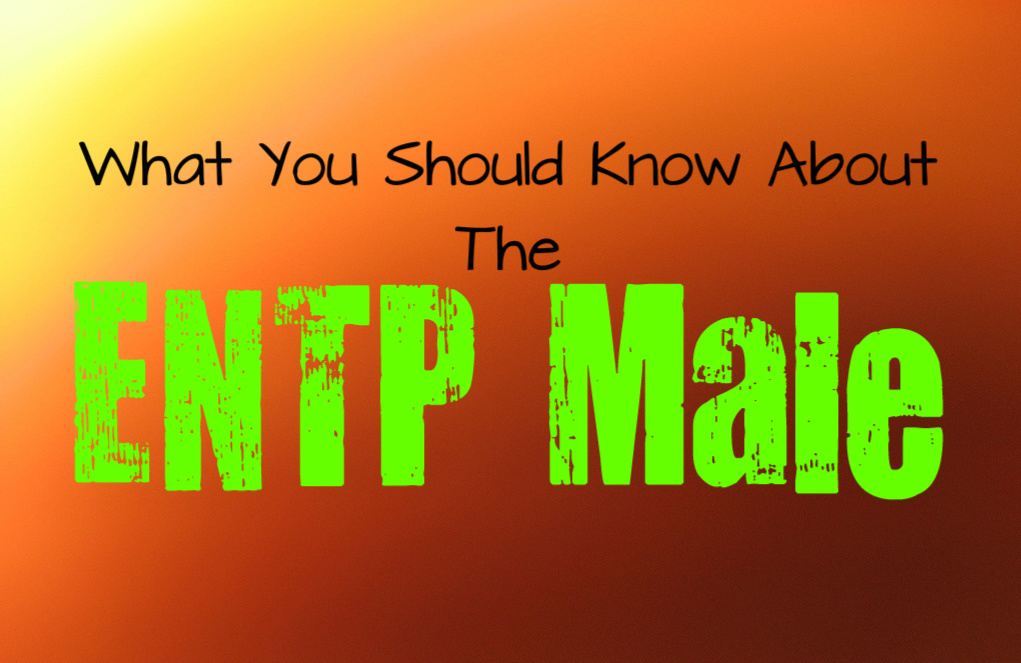 Important Information to Learn About the ENTP Male