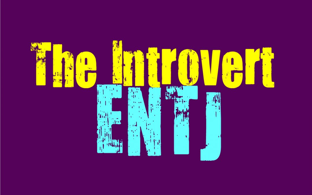 The Introvert ENTJ