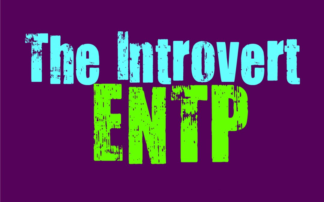 The Introvert ENTP