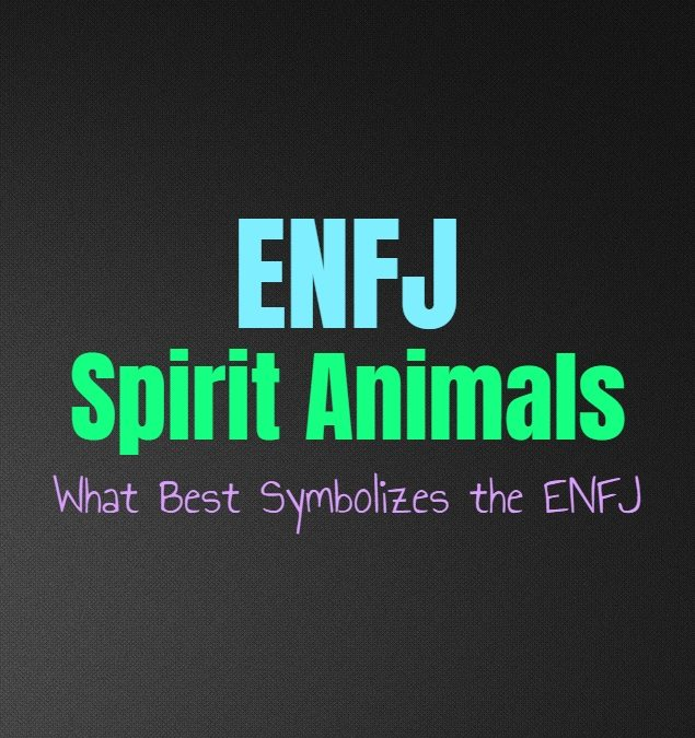 ENFJ Spirit Animals: What Best Symbolizes the ENFJ