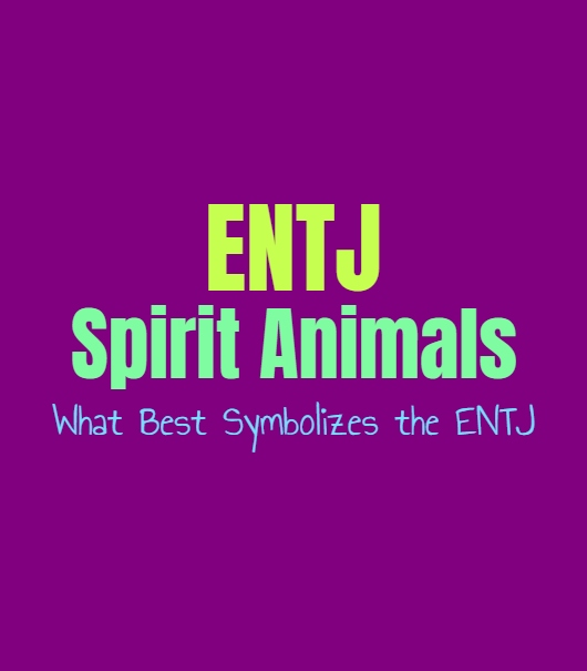 ENTJ Spirit Animals: What Best Symbolizes the ENTJ
