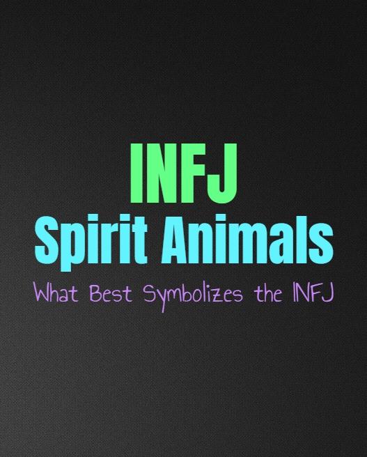INFJ Spirit Animals: What Best Symbolizes the INFJ